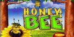 honey bee bb